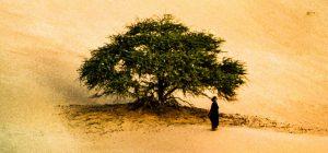 """Timbuktu"" di Abderrahmene Sissako"