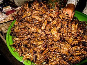Gli insetti nella cucina indonesiana