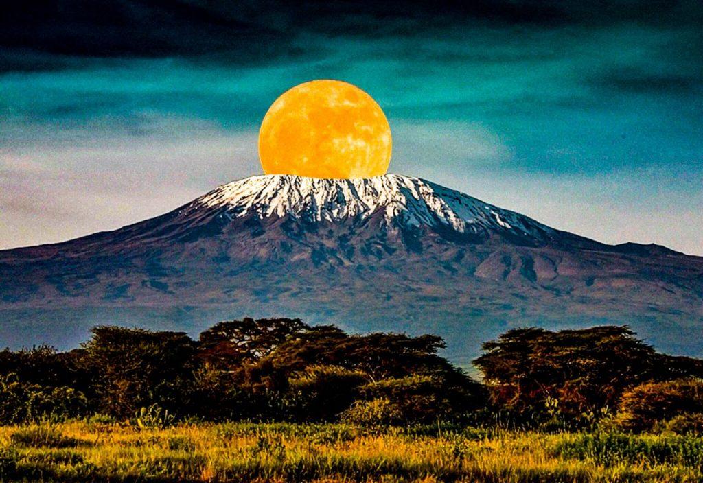 Kilimanjiaro